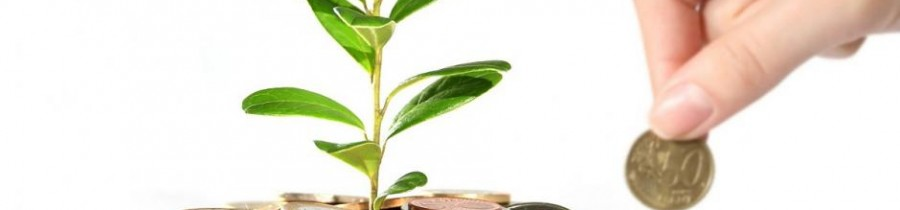 investment-novacon-the-payroll-and-accounting-company-bulgaria